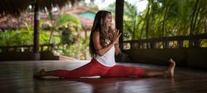 Yoga Teacher Training - Tara Folton